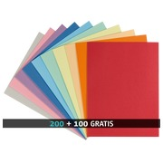 Pack 200 standard files 220 g Rainex 24 x 32 cm assorted colors + 100 free