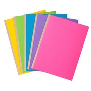 File folder in cardboard with bellow Exacompta 24 x 32 cm assorted - Pack of 10