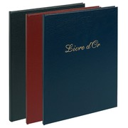 VISITORS BOOK 26X22CM 100PGS BALACRON AS - Assorted colours